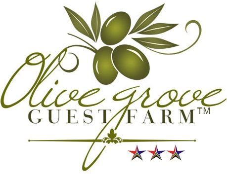 Olive Grove Guest Farm - Beaufort West